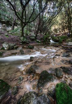 albertobastos posted a photo:  Beyond Es Salt des Freu, next to the Orient Valley at Bunyola, Mallorca. December 2016 days after the torrential rain.