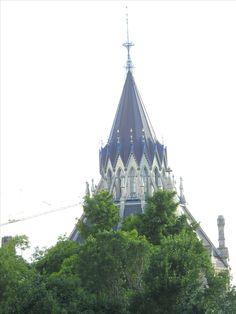 Downtown Ottawa Ottawa, Cathedral, Birds, Landscape, Building, Travel, Voyage, Scenery, Bird