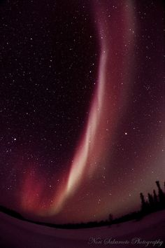 Nori Sakamoto  Reddish Aurora Arc at Starry Night