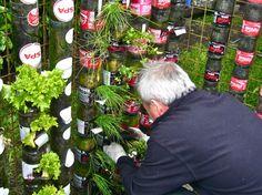 Bottle towers for fresh food production at home (Willem VAN COTTHEM)