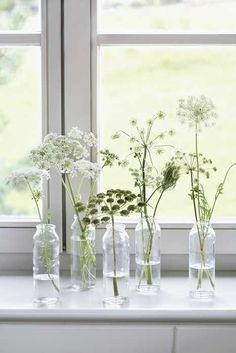 A wonderful collection of white flowers in glass bottles. They may not be the bouquet you usually on centerpieces but they work well as smaller arrangements perfect for the window sills and side tables.