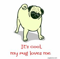 Cartoon Pug | ... Archives | Draw Your Pug | The Cartoon Pug Gallery | Pugtoonz Store