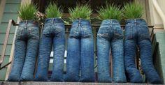 orto jeans