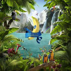 """This is """"Chiquita_paradise"""" by cgworks on Vimeo, the home for high quality videos and the people who love them. Web Design, Art Direction, Digital Illustration, Overlays, Paradise, Advertising, Behance, Outdoor Decor, Photography"""