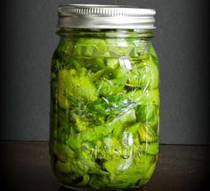 Recette facile de conserve de basilic frais