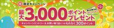 対象者限定!エントリー&ECナビ経由でお買い物をしてもれなく300ポイント、最大3,000ポイントプレゼントキャンペーン
