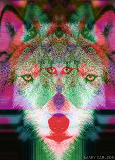 LARRY CARLSON, Glitch Wolf 3, digital photography, 2012.