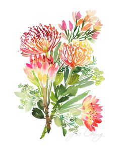 All of our artwork and designs originate as an original watercolor painting by Yao. Watercolor Cards, Watercolor Print, Watercolour Painting, Watercolor Flowers, Watercolor Wallpaper, Protea Flower, Protea Art, Art Aquarelle, Illustration Blume