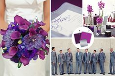 i love these grey suites with the purple.