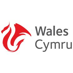 Welsh Government – Food and Drink Wales Silver Partner Destination Branding, City Branding, Welsh Tattoo, Ab Inbev, Lace Tattoo Design, Tattoo Designs, Welsh Dragon, Visit Wales, Living In England
