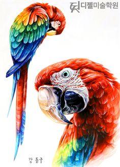 #앵무새 #새 #동물 Bird Drawings, Animal Drawings, Cool Drawings, Art Watercolor, Bird Artwork, Polychromos, Color Pencil Art, Animal Paintings, Beautiful Birds