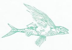 Flying Fish! by Nicole Fischer on Etsy