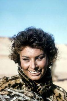 Photo: Sophia Loren : 18x12in