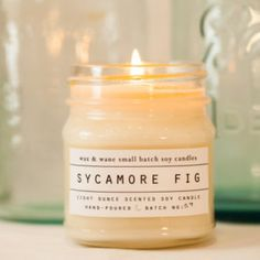 Sycamore Fig Soy Candle - Scented Candle - Custom Gift - Christmas Gift- Soy Candles - Ready to Ship Gift - Winter Candle - Gifts under 20