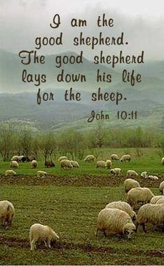 I Am the good Shepherd... -- < Pinned earlier on my Enchantment board ... https://www.pinterest.com/pin/507710557964414617/ >