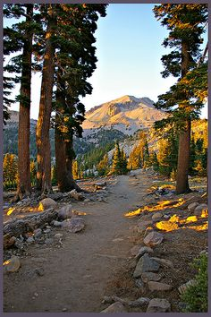 trail to Bumpass Hell, Mt. Lassen National Park, CA