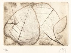 Whirl Leaves is an original botanical etching print  Artist: Ana Dora Title: Whirl Leaves Medium: etching, engraving inked in brown sienna Image: 5.7 x 4 in (14,6 x 10,1 cm) Paper: 6.9 x 8.7 in (17,5 x 22 cm) Signature: Pencil signature in the right lower margin Edition number: 08/20 in the lower left margin Paper: Hahnemühle 300g antik  This piece will come with a Certificate of Authenticity. - Sold Unframed and Unmatted -  This is an ORIGINAL PRINT, not a reproduction.  All limited edi...