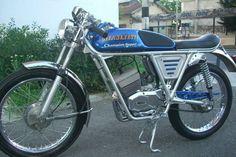 1972 Testi Champion