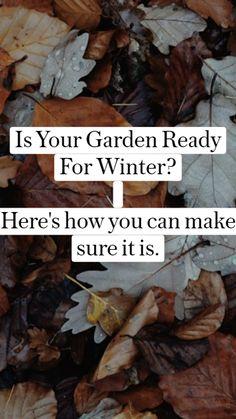 Garden Care, Garden Beds, Lawn And Garden, Beginners Gardening, Gardening Tips, Fruit Garden, Vegetable Garden, Dragon Garden, Treehouse Ideas