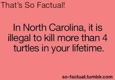 I new I liked North Carolina for a reason ....