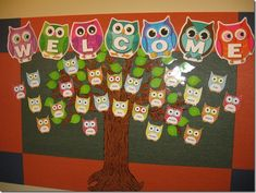 owl welcome bulletin board
