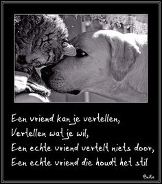 Bekend 18 beste afbeeldingen van Spreuken - Dutch quotes, Beautiful Words #MS64