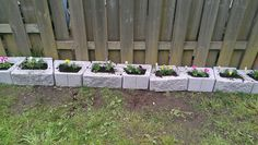 I used concrete blocks as planters. (To keep my dog from digging)