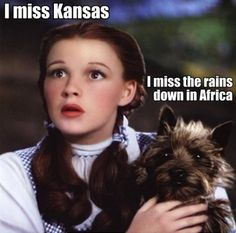 Toto knows we're not in Kansas anymore. ;)