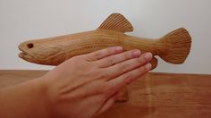 Traíra entalhada em madeira de qualidade e resistente, com tratamento anti-cupins e encerada para dar brilho a madeira, NÃO é pintada. Pode ficar em ambiente internos ou externos. Muito bem detalhada e realista. Linda peça de decoração. Peça feita 100% a mão. Tamanho: 28 cm de comprimento / 11 cm de altura / 4 cm de profundidade. Preço: 282,00 reais Quantidade: Feito Sob Encomenda Trabalhamos com vários tipos de madeiras. Aceitamos encomendas em outros tamanhos. (Comp. Máx. = 28 cm)