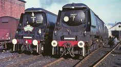 BR Southern Railway locomotives Battle of Britain Class 34006 Bude & 34057 Biggin Hill at Bath Green Park motive power depot March Diesel Locomotive, Steam Locomotive, Southern Trains, Steam Trains Uk, Uk Rail, Railway Posters, Travel Posters, Southern Railways, Merchant Navy