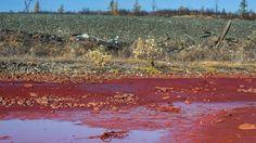 Oorzaak van bloedrode kleur van rivier Daldykan bekend : chimische producten van firma Norilsk Nickel