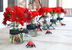Creative mom Kirsten strikes again with a smartly planned Red and Black Lady bug party! Gerber daisies in the mason jars are so clean but cute!