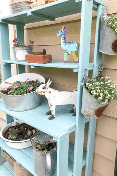 Easy to grow flowers - Sweet Alyssum. Trailing Flowers, Faux Flowers, Zinnias, Petunias, Easiest Flowers To Grow, Plants For Hanging Baskets, Bacon Potato, Replant, Potato Casserole