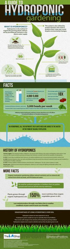 Hydroponic- ask me about the Tower Garden by Juice Plus!!