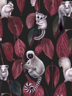 Siberia Dark is a rich red tone foliage on a black background complete with adorable creatures including squirrels, owls and bush babies. The sumptuous fine art influence and digital print finish bring the charming features to life in these delightful designs by Witch and Watchman. This quality wallpaper benefits from being a paste the wall paper, which means it is incredibly easy to apply and work with whilst decorating. Fantastic Wallpapers, Animal Print Wallpaper, Dark Witch, Wild Creatures, Safari Animals, Stuffed Animal Patterns, Designer Wallpaper, Black Backgrounds, Digital Prints