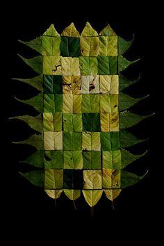 patchwork | STILL  (mary jo hoffman)