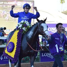 Talismanic winner of the 2017 Breeders Cup Turf.