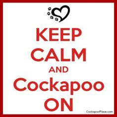 Keep Calm and Cockapoo On!