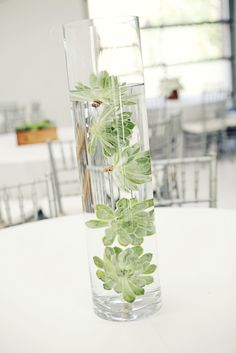 Submerged succulents. Could be fun to line the aisle (top with floating candles) or on your sign-in table or even the altar table. We could also do this in the base of an arrangement and then top the whole thing with floral.