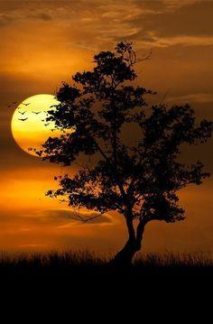 Sonnenuntergang Mehr paintings of nature scenery Beautiful Moon, Beautiful Images, Beautiful Lights, Simply Beautiful, Amazing Nature, Belle Photo, Night Skies, Beautiful Landscapes, Beautiful Nature Photography