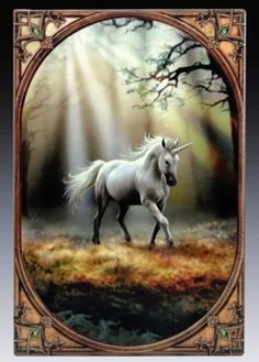 Glimpse of the Unicorn - Anne Stokes