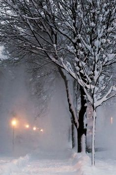 Snowy night (South St Paul, Minnesota) by CynthiaSue