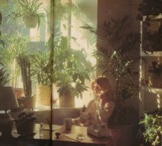 Office Greenery - Photograph by Pat Hill for Viva, March Pat Hill, New Wall, Dream Life, Aesthetic Pictures, Daydream, Ethereal, Scenery, Artsy, Wallpaper