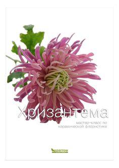 Мастер-класс по керамической флористике. Хризантема фиолетовая  Мастер-класс по лепке цветка их полимерной глины (холодный фарфор). Хризантема фиолетовая с тонкими лепестками