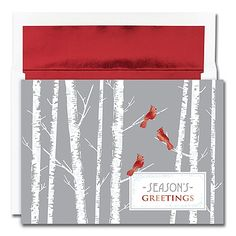 Cardinals Holiday Collection Boxed Holiday Card