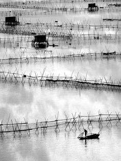 Shu cheung Phili Ho, Shrimpman Amazing Photography, Landscape Photography, Nature Photography, Fishing Photography, Black And White Artwork, Black N White Images, Great Photos, Cool Pictures, Beautiful Pictures
