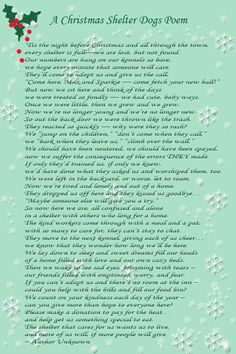 A Christmas Shelter Dogs Poem Honestly made me cry my eyes out. Shelter Dogs, Animal Shelter, Animal Rescue, Dog Poems, Animal Poems, Rottweiler Puppies, Dog Treats, Dog Life, Dogs And Puppies