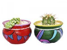 Cactus SN