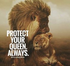 27 Best King Queen quotes images | Lion quotes, Quotes, Lion ...