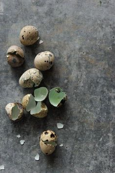 Learn to Fly . (via Crush Cul de Sac) Still Life Photography, Food Photography, Rustic Photography, Food Styling, Broken Egg, Egg Nest, Quail Eggs, Egg Shells, Kitchenaid